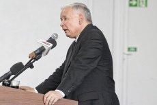 """Jarosław Kaczyński uważa, że zakaz praktykowania uboju rytualnego poparli """"przyzwoici ludzie"""""""