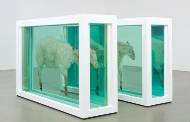 Damien Hirst, Z dala od stada (Rozdzielenie), 1995, szkło, stal malowana, silikon, akryl, plastikowe zaczepy, stal nierdzewna, owca, roztwór formaldehydowy, każda część: 118 x 186 x 51,3 cm, Dzięki uprzejmości Prada Collection, Mediolan