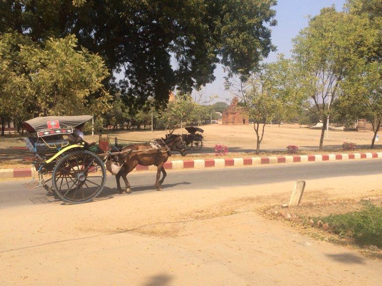 Dwukołowa bryczka - wygodny sposób na zwiedzanie  Bagan/Birma