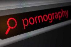 Daniel był przez 14 lat uzależniony od [url=http://shutr.bz/16tJwB2] filmów porno [/url], żeby to zrozumieć musiał się doprowadzić do impotencji.