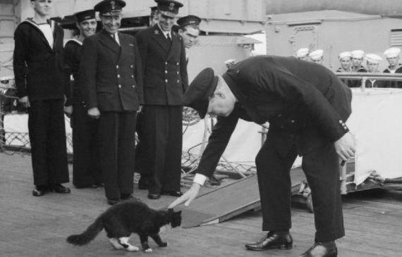 Winston Churchill głaszczący Blackiego, kota pokładowego pancernika HMS Prince of Wales (zdjęcie ilustracyjne)