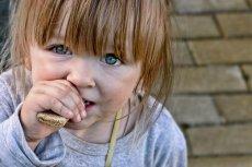 Najwyższy odsetek osób żyjących w skrajnym ubóstwie jest w województwie warmińsko-mazurskim.