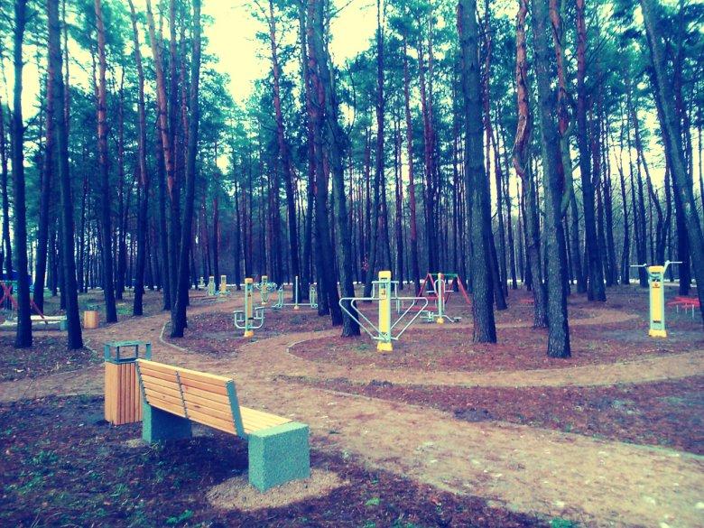 Nad stawem znajduje się piękny las. Ta przestrzeń również została dobrze wykorzystana. Są tu alejki spacerowe i siłownia na świeżym powietrzu.