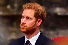 Książę nie chce zakładać dużej rodziny.