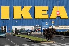 Z raportu frakcji Zielonych wynika, że IKEA unikała płacenia podatków w krajach UE.