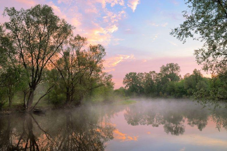 Poranek nad rzeką Narew.