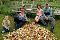 Rodzina z Ukrainy pochwaliła się, że zebrała ponad 100 kg prawdziwków.