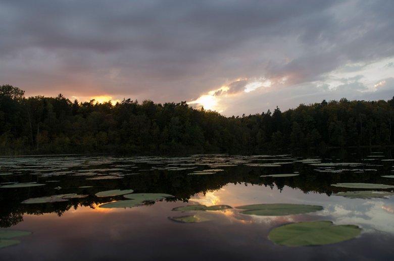 Blisko Glendorii znajduje się kilka ciekawych rzek i pięknych jezior, np. Isąg czy Narie,  nadających się do spływów kajakowych.