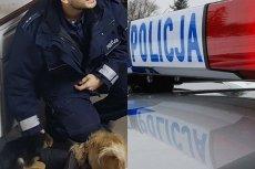 Policjant z Podlasia podbił serca internautów. Uratował szczeniaka i jest wyjątkowo przystojny