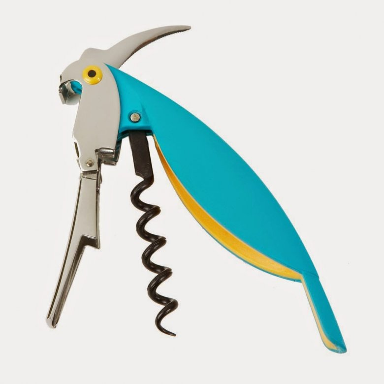 Papuga w akcji...
