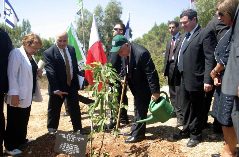 Zdjęcie z 2006 r. z Yad Vashem; prezydent Lech Kaczyński sadzi polskie drzewko na Górze Herzla.