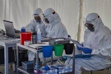 Pandemia koronawirusa spowodowała o wiele więcej ofiar?