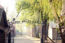 Belgowie okradli Auschwitz.