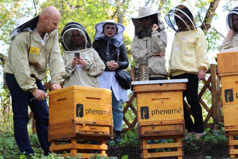 Ulami na terenie Fortu Mokotowa w Warszawie mają opiekować się eksperci od pszczół z Pszczelarium, które propaguje ideę miejskiego pszczelarstwa