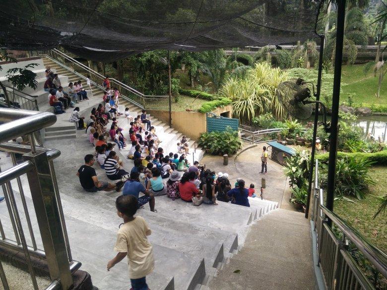 Bird Park, Kuala Lumpur (Malezja)