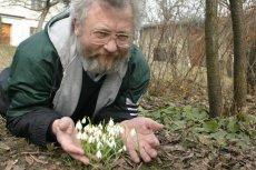 Przebiśniegi to pierwsza oznaka wiosny. Astronomiczna wiosna rozpocznie się dokładnie 20 marca o godz. 22:58.