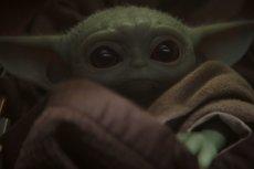 Baby Yoda podbija nawet najtwardsze serca