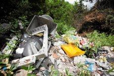 Środowisko zatrute, pieniądze stracone. Od roku Polska traci miliony przez brak nowych przepisów o elektrośmieciach