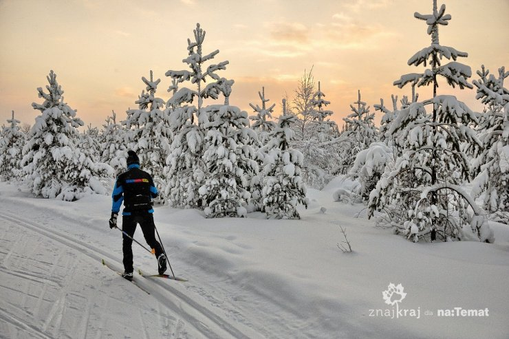 Biegacz narciarski na trasie w okolicy Ruki