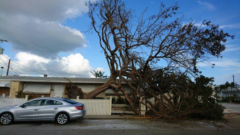 Key West Floryda 2017 po przejściu huraganu Irma