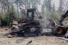 Do podpalenia doszło w leśnictwie Rozdroże w Nadleśnictwie Szklarska Poręba.
