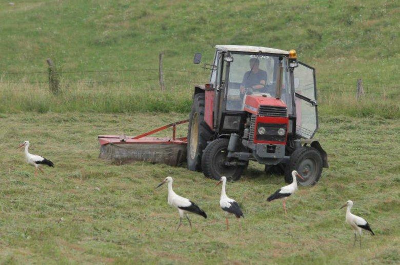 Rolnicy zyskali na wejściu do UE i dziś są jednąz najlepiej sytuowanych grup społecznych w Polsce.