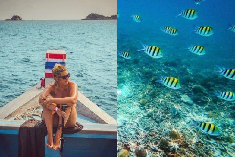 Wyspa Koh Tao w Tajlandii słynie z rajskich plaż i pięknych widoków