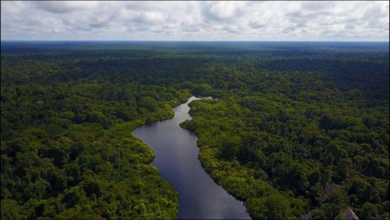 Amazońska dżungla – miejsce przeżyć opowiedzianych nam przez Maćka.