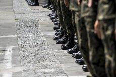 Żołnierze w paradzie zawsze budzą zachwyt. Wielu jednak wiesz psy, szczególnie na ojcach pracujących w wojsku. Często te opinie są przesadzone.