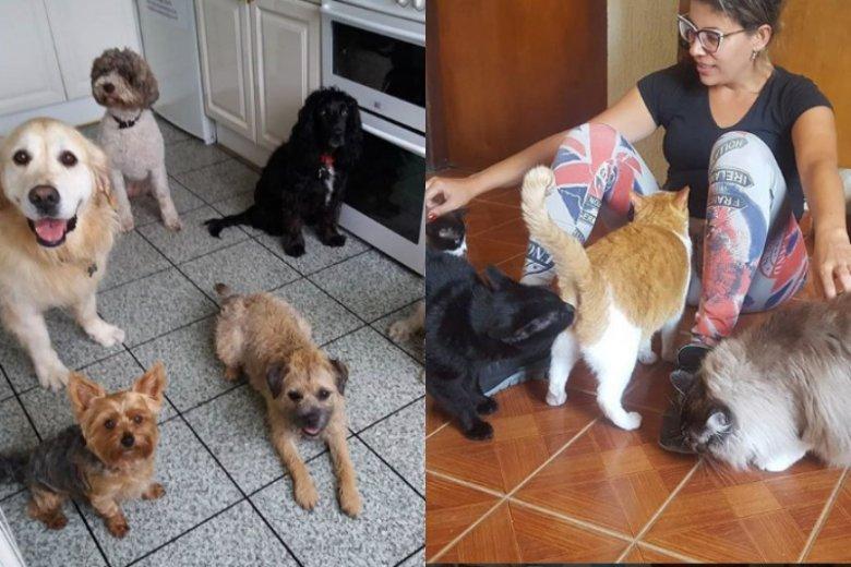 Zwierzęta dostają od petsitterów dużo miłości, ale również profesjonalnej opieki, zgodnej z ich potrzebami