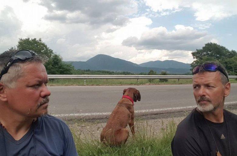 To pies wybrał sobie Romana Ziębęi jego przyjaciela, Szymona na towarzyszy podróży.