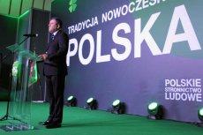 W PSL konkurenci tylko czekają na potknięcie Janusza Piechocińskiego.