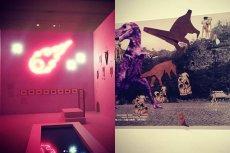 """Wystawa """"Wszystko widzę jako sztukę"""""""