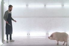 """Kadr z filmu """"Casa de Carne"""". Ta produkcja nie jest dla tych, którzy chcą ją obejrzeć i dalej jeść mięso."""