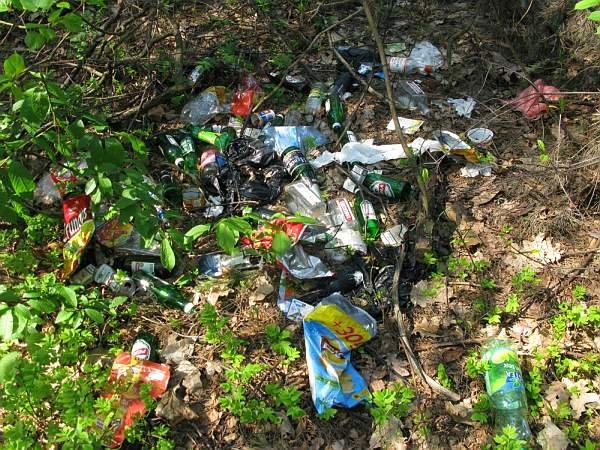 Miejsc, które powinny zostać skutecznie posprzątane nie brakuje - nawet w parkach narodowych