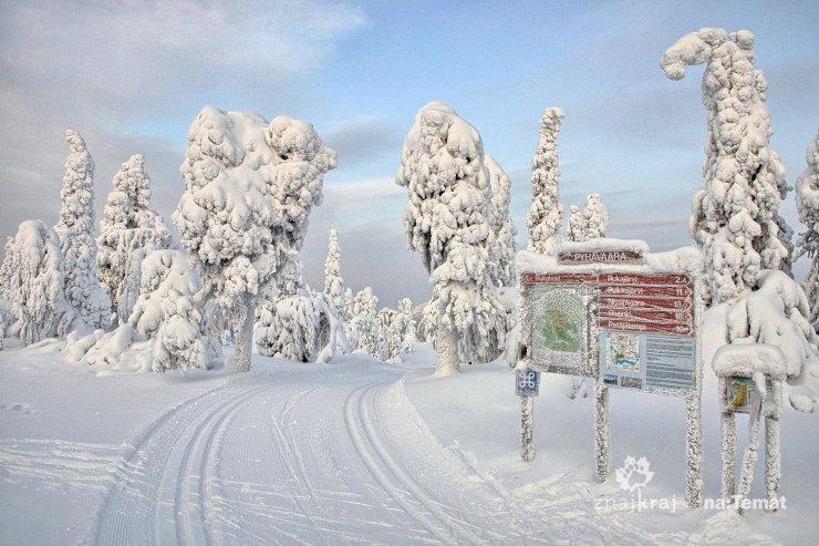 Trasa narciarska w rezerwacie Pyhävaara