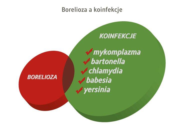 borelioza a koinfekcje