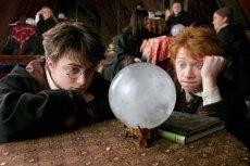 """""""Harry Potter"""" wciąż ma wierne grono fanów. Nawet wśród więźniów"""