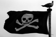 Piractwo w Polsce ma się coraz lepiej