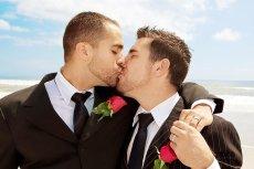 Jak pokazywały sondaże większość Irlandczyków popiera legalizację małżeństw tej samej płci