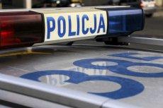 Policja w Łodzi zatrzymała Irakijczyka, który przygotowywał zamach bombowy.