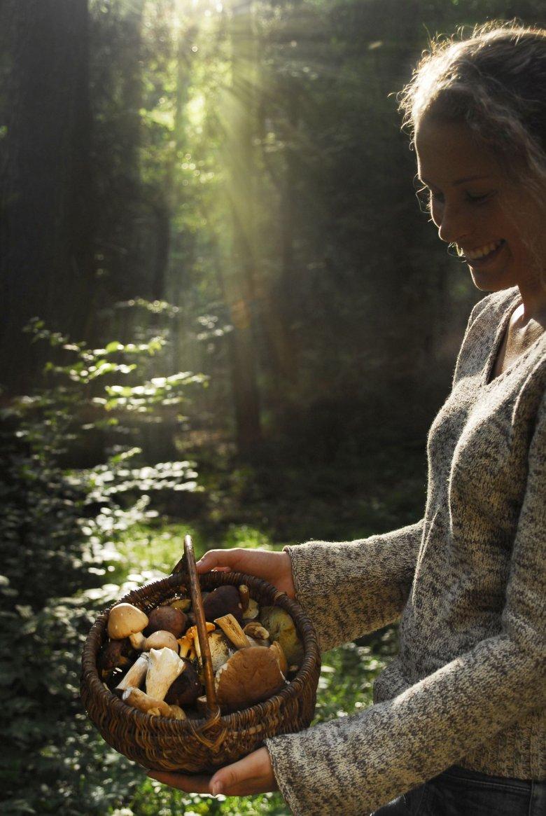 Nie liczy się tylko ilość, ale tez jakość znalezionych grzybów.