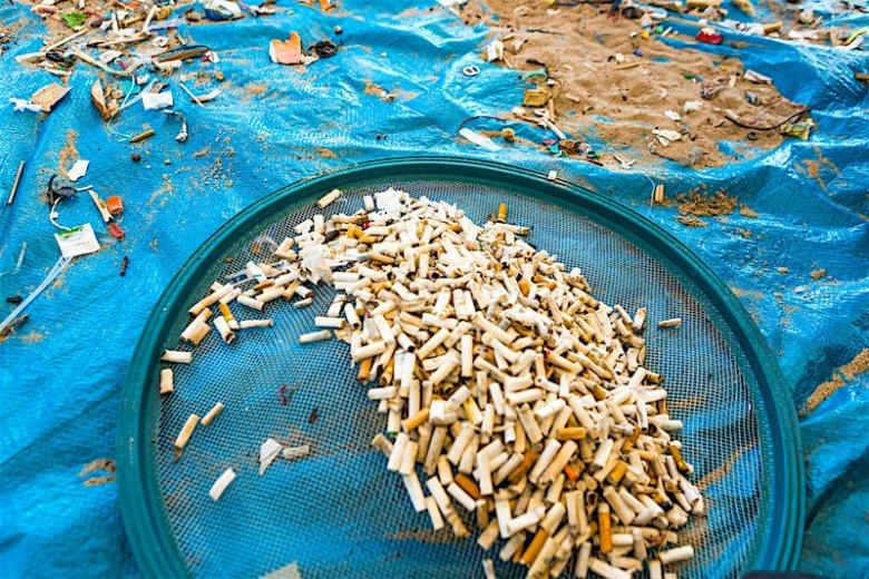 Cigarette Butt Pollution Project walczy o to, aby podczas akcji sprzątania plaż znajdowano tam jak najmniej niedopałków.