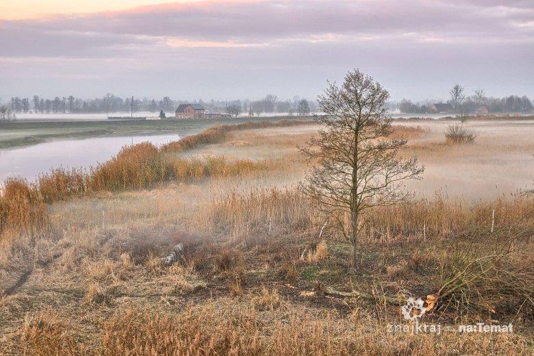 Jesienny krajobraz Rzeczypospolitej Ptasiej