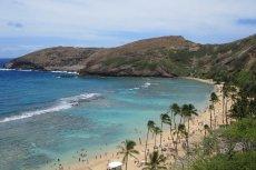 Dla takiego widoku warto wszystko rzucić. Praca na Hawajach czeka.