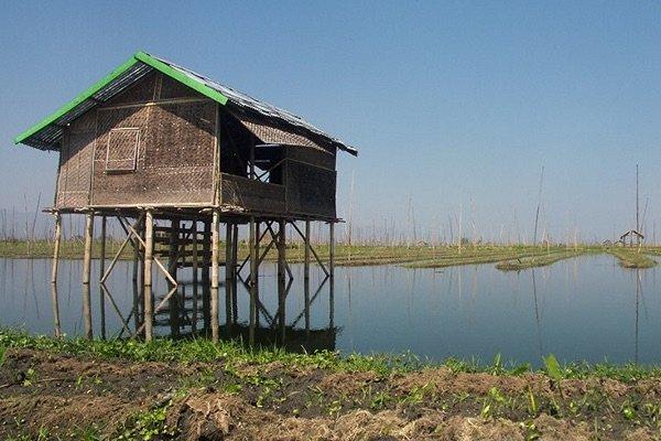 Plantacje warzywne nad jeziorem Inle/Birma