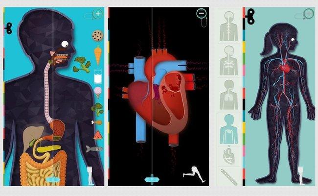 Aplikacja dostępna w App Store, The Human Body by Tinybop