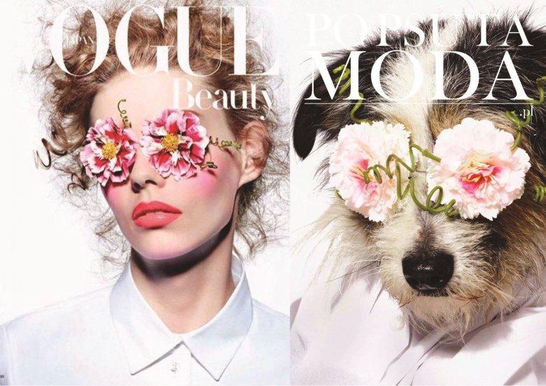 Modelka vs. Pies - prawie bez różnicy