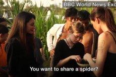Angelina Jolie udzieliła wywiadu podczas którego poczęstowała dziennikarkę smażoną tarantulą.