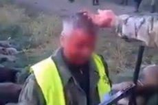 Na nagraniu nowy myśliwy daje się kolegom wymazać po twarzy krwią.